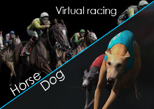 Virtual Dogs and Horse